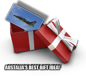 Jet Fighter ride Gift